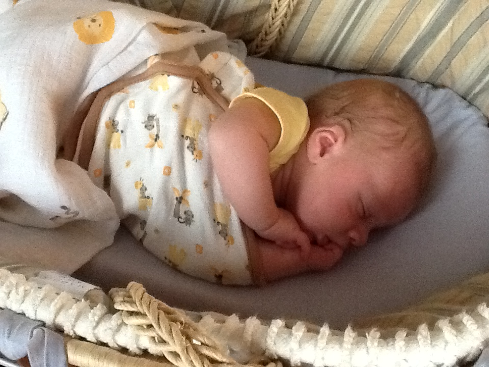 Dutiful Swaddleme By Your Side Sleeper Baby