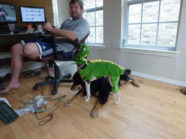 Italian Greyhound dog dinosaur costume