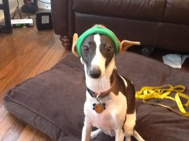 Christmas Walter